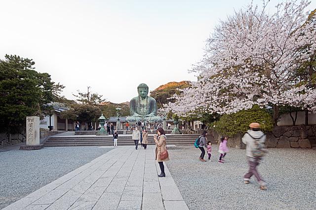 Kamakura: Großer Buddha & Gourmet-Essen – Tag 13