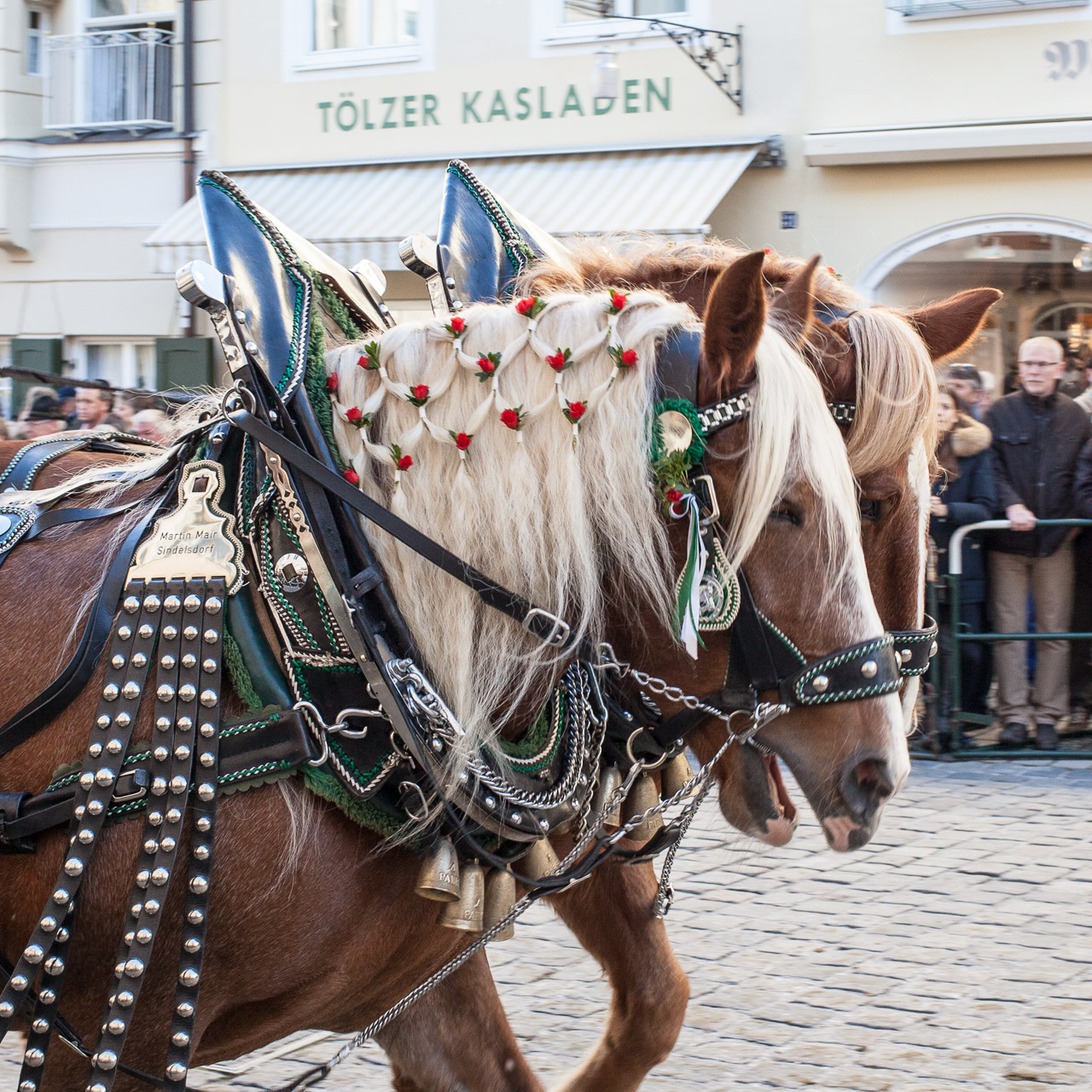 Japan-in-Muenchen-Festival-mit-Pferden-IMG_7772