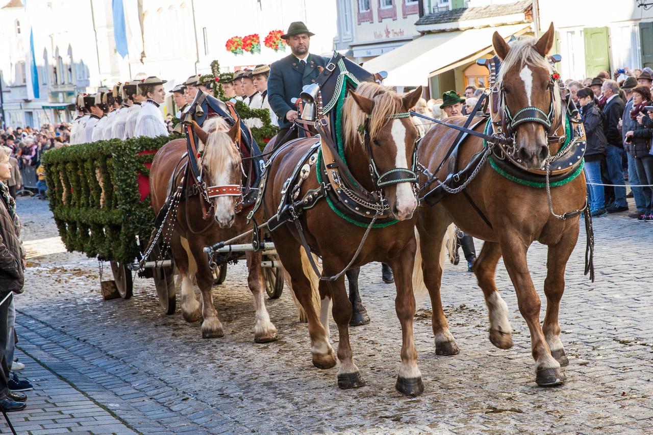 Japan-in-Muenchen-Festival-mit-Pferden-IMG_7997